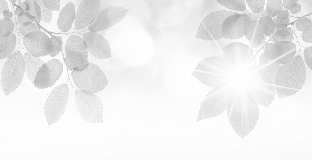 """""""丹青国韵""""馆藏二玄社复制中国传统书画精品展"""