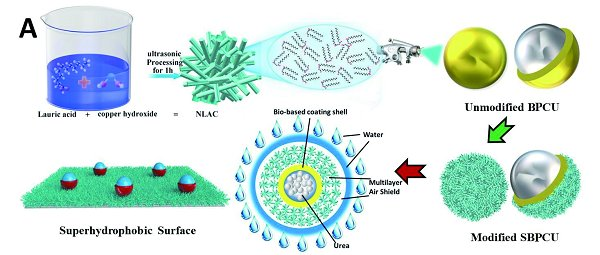 杨越超团队解析生物基膜控释性能提升新途径