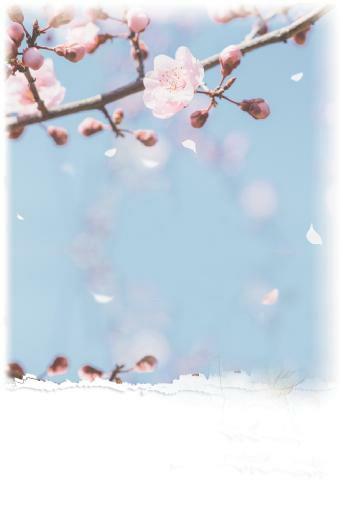 一種叫作『春天』的溫暖