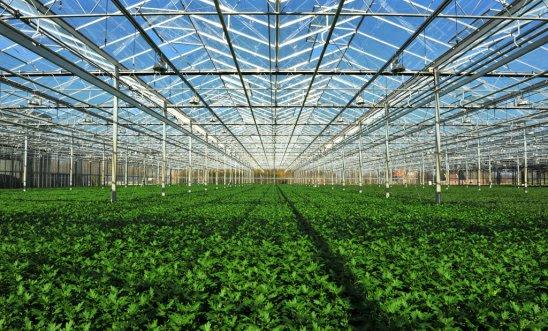 蒸发冷却技术在农业生产上的应用-澳蓝福建实业有限公司校报电子版