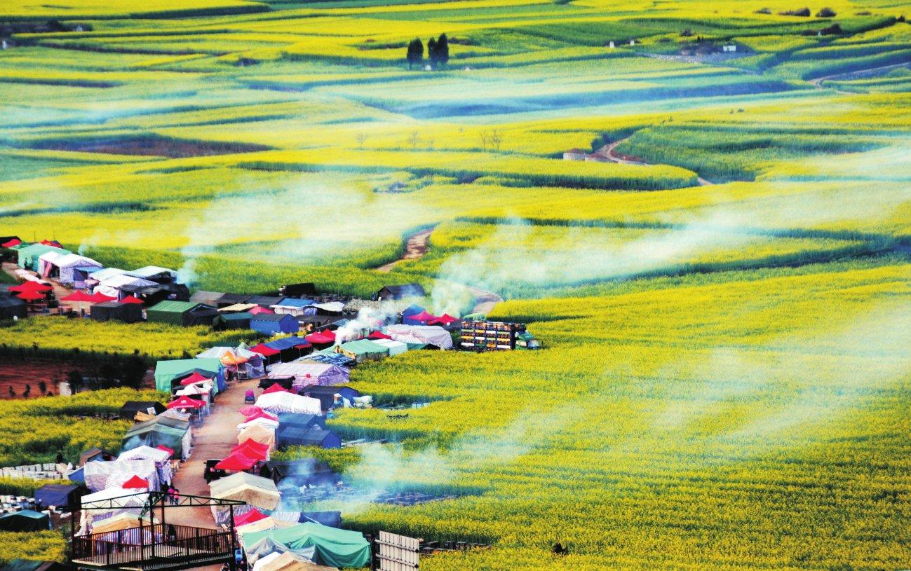 甘南风景油画作品